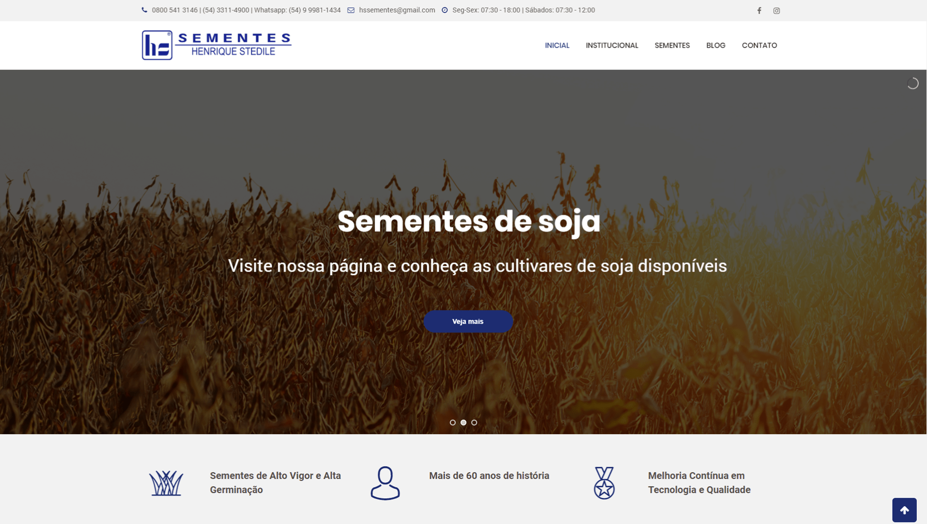 https://www.6i.com.br/case/hs-sementes/
