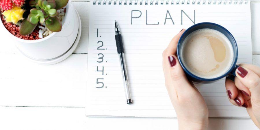 Sua empresa tem metas de vendas bem definidas?